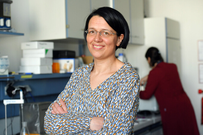 Physio-chemist Prof Dr Janina Kneipp is this year's awardee of the Caroline von Humboldt-Professorship