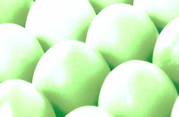 Jetzt Eier checken!