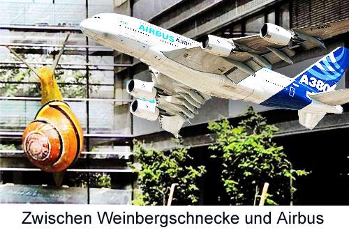 Zwischen Weinbergschnecke und Airbus A 380 in Adlershof